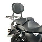 Sissy Bar + Gepäckträger Harley Davidson Sportster 883 Iron (XL 883 N) 09-16 Customacces schwarz