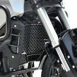 Kühlerabdeckung Honda Crosstourer 12-17 Edelstahl schwarz